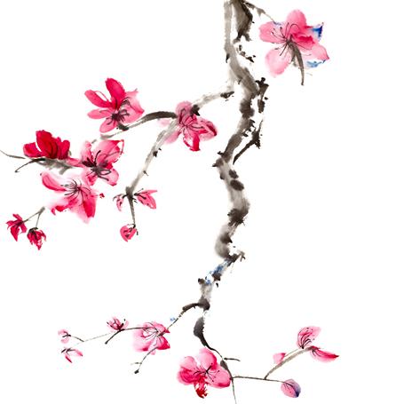 Pintura Oriental Sumi-e Flor de Ciruelo