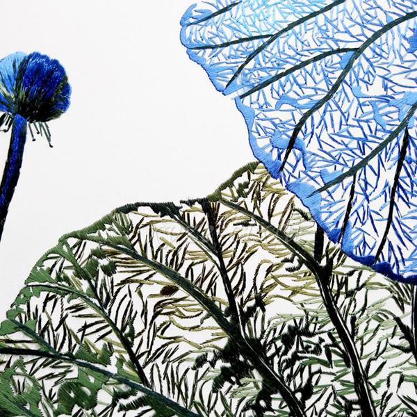 Blue lotus leaves 02